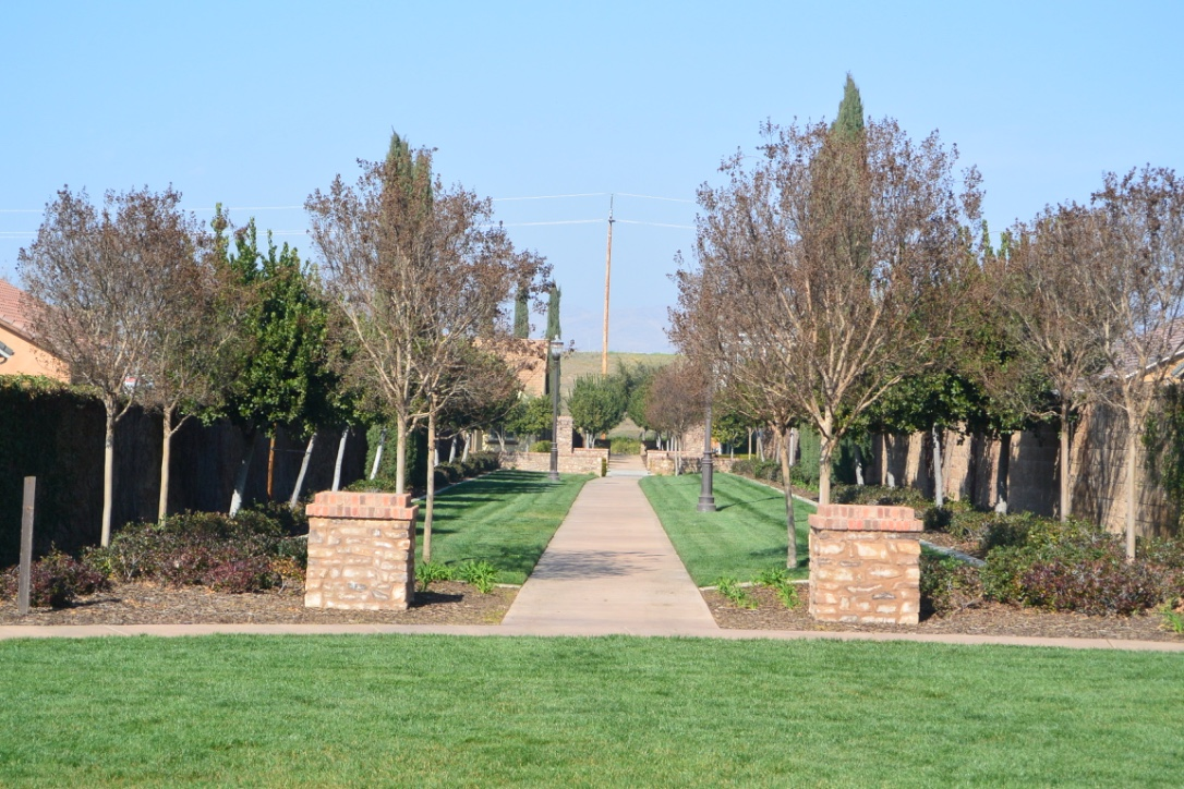 What Are Homes Selling For at Harlan Ranch in Clovis CA. 93619