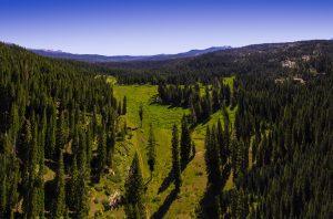 European Glen Homes - Sierra National Forest
