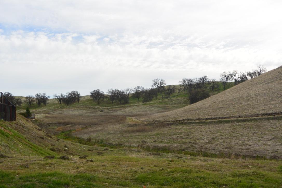 Natural Terrain in Friant